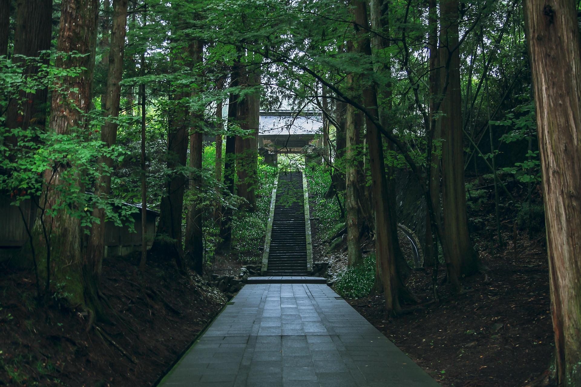 【お寺で婚活】 吉縁会への参加方法