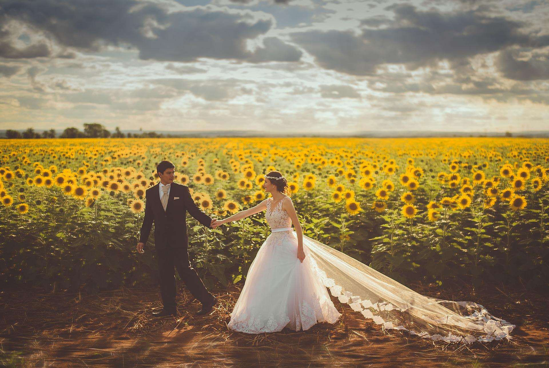 【婚活】夏に種まきをすれば冬までに愛を収穫できるかもしれない
