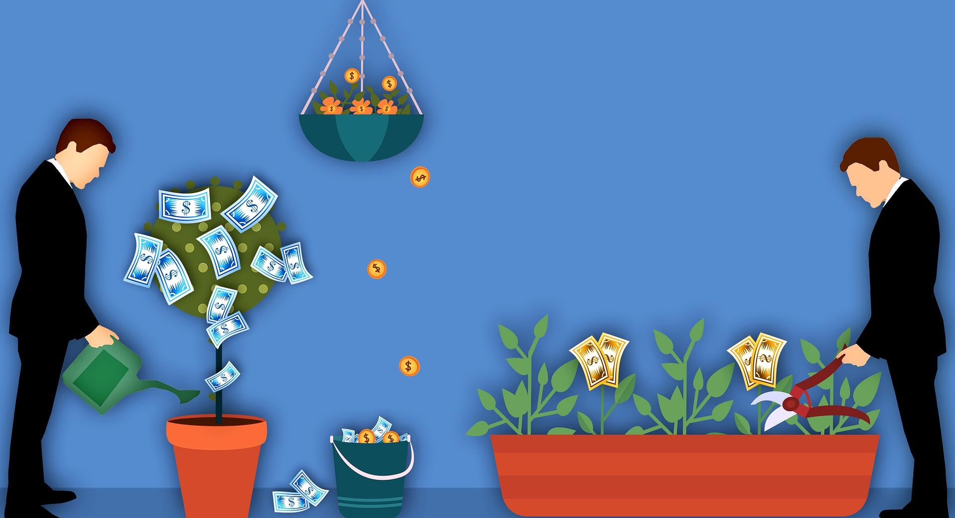 金の成る木はお金をもたらしてくれるだけでなく精神的な安らぎも与えてくれる